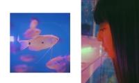 http://luyangphotography.com/files/gimgs/th-20__202004201244282.jpg